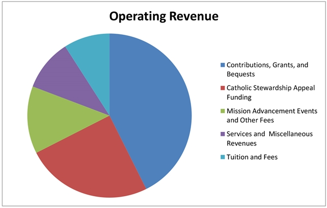 Operating Revenue Pie Chart